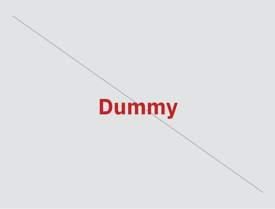 Dummy Asset